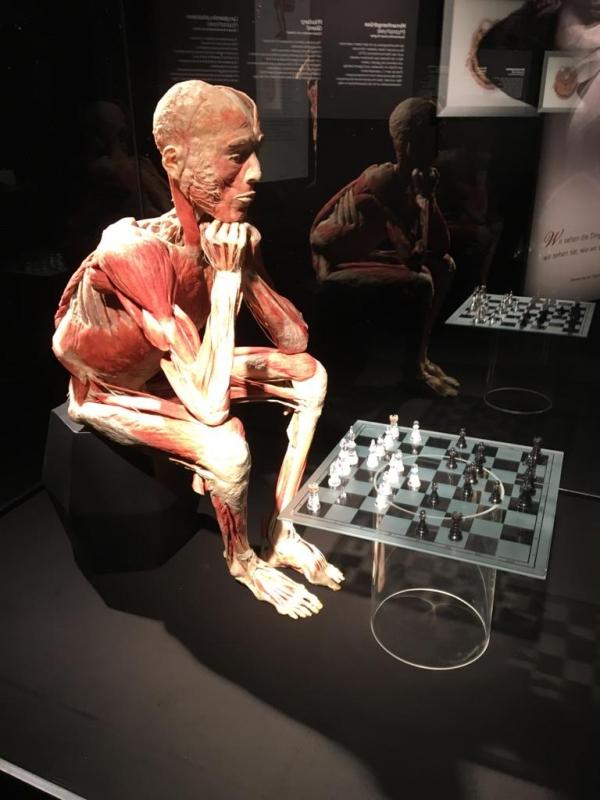Schach Körperwelten